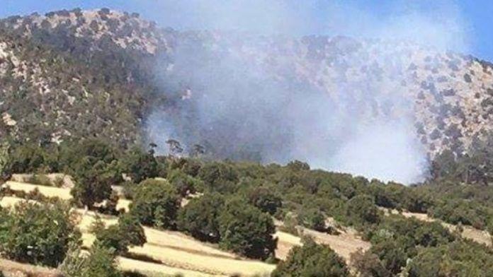Yangında 50 Hektarlık Alan Kül Oldu