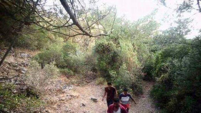 Aydın'da 11 Kaçak Göçmen Yakalandı
