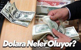 Dolarda Son Durum: Düşüş Sürüyor, Euro Dengeleniyor!