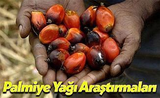 Palmiye Yağı Tartışmalarına Dünyadan Yorum Yağdı!