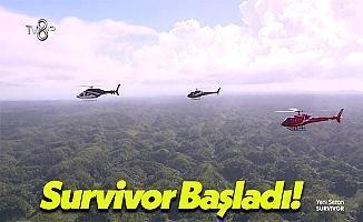 Sosyal Medyanın Gündemi: Survivor 2017