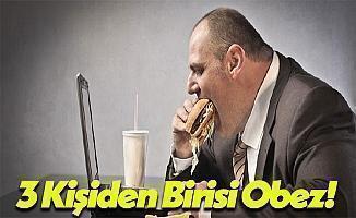 Türkiye'de Her 3 İnsandan Bir Tanesi Obez!