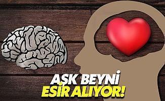 Aşk Sadece Kalbi Değil, Beyni De Esir Alıyor!