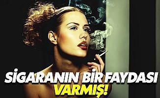 Nikotin Şizofreniye İyi Geliyor