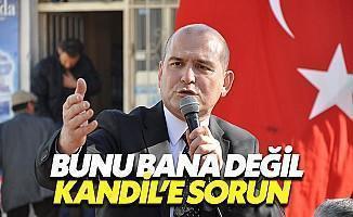 Soylu'dan CHP'ye: Gidin Kandil'e Sorun