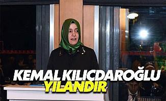 Bakan Kaya'dan Kılıçdaroğlu'na Sert Sözler