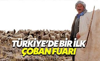 Türkiye'de Bir İlk: Çoban Fuarı