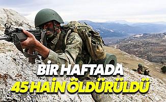 TSK'dan bölücülere darbe: Bir haftada 45 terörist öldürüldü
