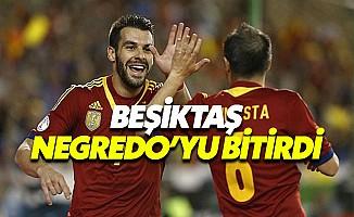 Beşiktaş, Alvaro Negredo'da mutlu sona ulaştı, Alvaro Negredo kimdir?