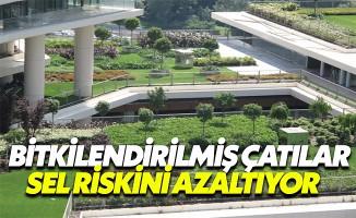 """""""Bitkilendirilmiş çatılar, şehirlerde sel riskini azaltıyor"""""""
