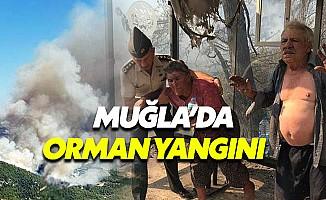 Muğla Zeytinköy'deki orman yangını tehlikeli boyutlara ulaştı