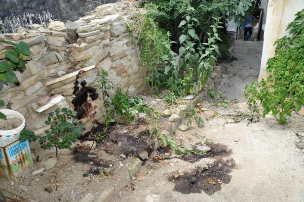 Perili evin bahçesinden ceset çıktı.